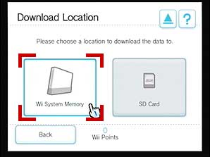 How to download Netflix from the Wii Shop Channel